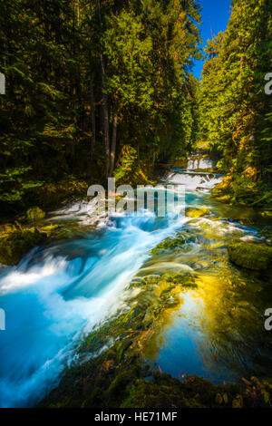 McKensie River down from Sahalie Falls Oregon Willamette National Forest - Stock Photo