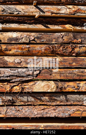 Close up of fresh wooden board in sawmill. - Stock Photo
