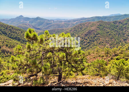 Beautiful landscape with fields and mountains in Andalucia, Spain - Stock Photo