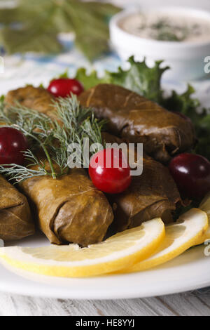 Dolma of grape leaves with herbs on a plate macro. vertical - Stock Photo
