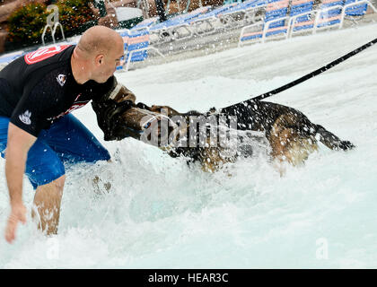 Ryan Flannigan, Tampa Police Department canine handler, conditions Rick, 6th Security Forces squadron military working - Stock Photo