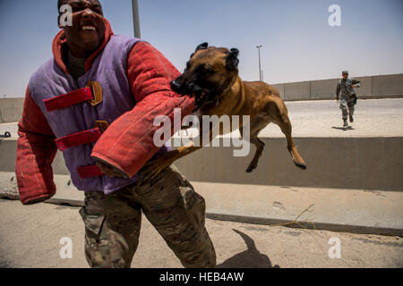 U.S. Air Force Staff Sgt. Mark Bush, 386th Expeditionary Security Forces Squadron military working dog handler, - Stock Photo