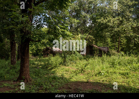 House of vedda people - Stock Photo