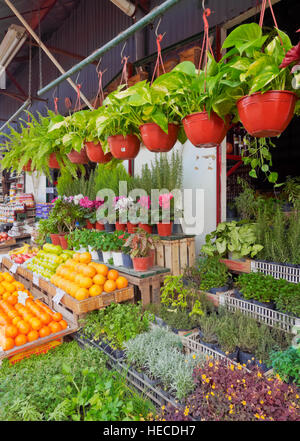 Argentina, Buenos Aires Province, Tigre, View of the Puerto de Frutos Market. - Stock Photo