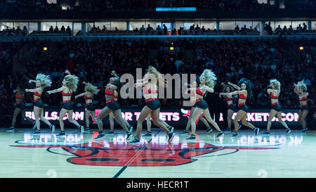Chicago, USA.  19 December 2016. The Bulls cheerleaders, The Luvabulls, entertain spectators during the Chicago - Stock Photo