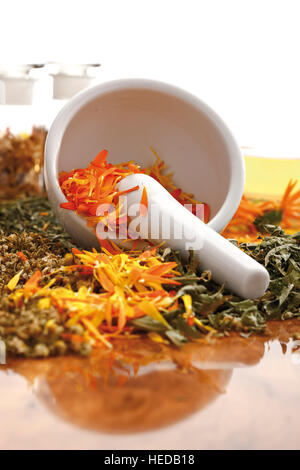 Mortar and pestle, healing herbs and spices, chamomile, marigold, vervain or verbena, medicinal plants - Stock Photo