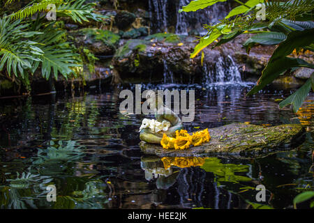 ... Statue In Koi Pond In Marie Selby Botanical Gardens In Sarasota Florida    Stock Photo