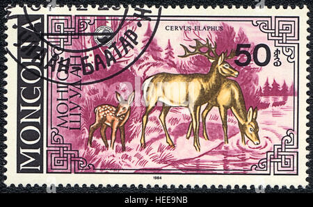 A postage stamp printed in Mongolia shows Deer watering place(Cervus elaphus),  series, 1984 - Stock Photo