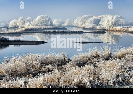 Winter landscape of the river Elbe in Hamburg, Germany, Europe - Stock Photo