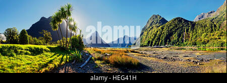 Panorama of Milford Sound, Mitre Peak, palm trees at low tide, Fiordland National Park, Te Anau, South Island, New - Stock Photo