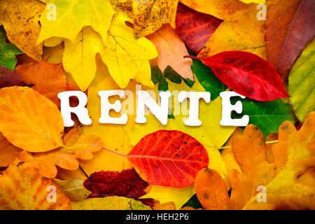 Schriftzug Rente auf Herbstblaettern - Stock Photo