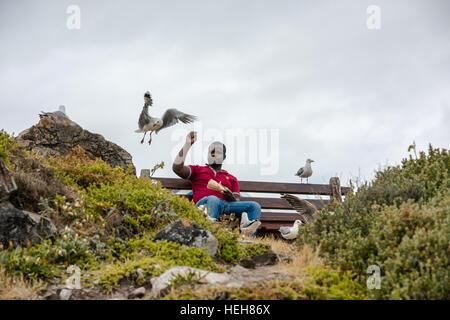 Man feeding seagulls at the coast - Stock Photo