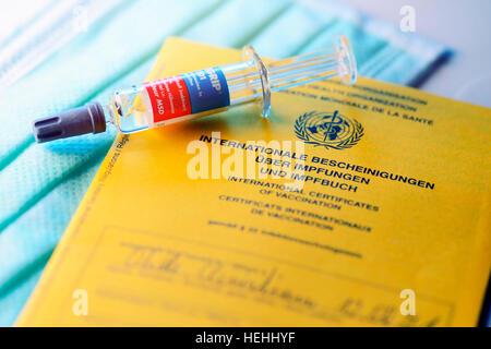 Impfausweis und Impfspritze - Stock Photo
