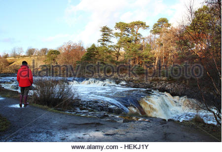 Low Force Waterfall, Nr Bowlees, Middleton-in-Teesdale, Co Durham, UK 22nd December 2016 Before the second named - Stock Photo