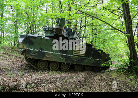 U.S. Army Soldiers of Alpha Company, 5th Battalion, 7th Cavalry Regiment provide security in a M2 Bradley Fighting - Stock Photo