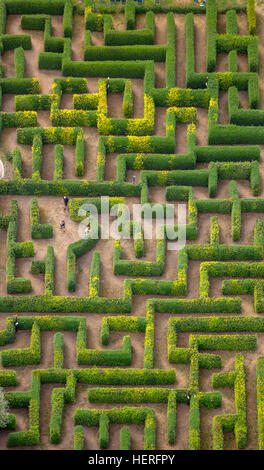 Aerial view, hedge maze, labyrinth, Bollewick, Mecklenburg-Western Pomerania, Germany - Stock Photo