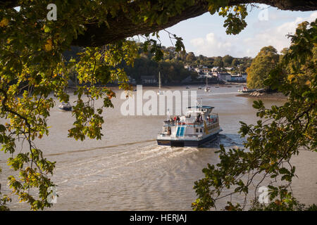 The river Dart at Dittisham in South Devon with a a pleasure boat arriving from Dartmouth - Stock Photo