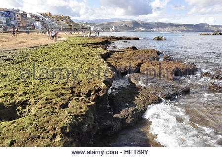 Playa de las Canteras beach rocky coast at low tide Las Palmas Gran Canaria Canary Islands Spain - Stock Photo