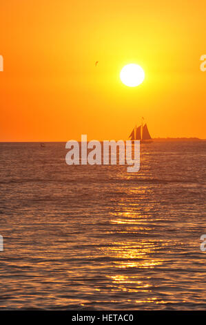 Sunset cruise schooner off coast of Key West, Florida, USA. - Stock Photo