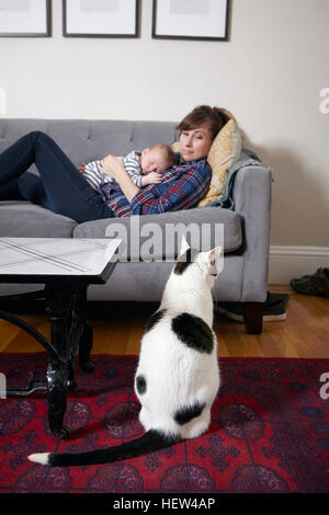 Mother and baby boy lying on sofa looking at cat - Stock Photo