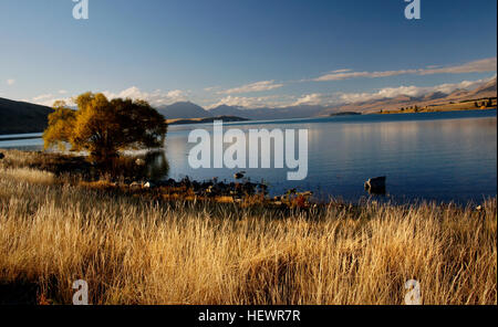 Lake Tekapo is the second-largest of three roughly parallel lakes running north–south along the northern edge of - Stock Photo