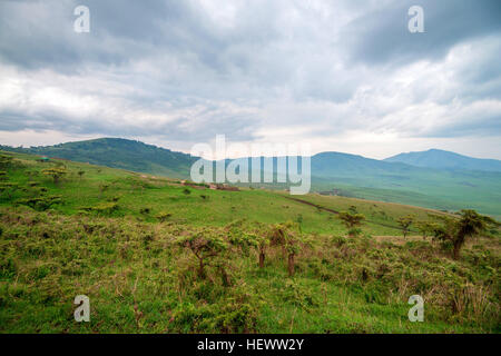 Scenic view in Tanzania with dramatic sky, depression near Ngorongoro crater - Stock Photo