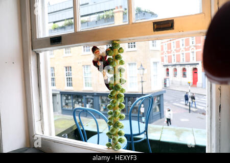 Father Christmas sprouts climbing tree xmas dinner - Stock Photo