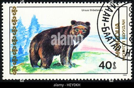A postage stamp printed in Mongolia shows bear Ursus thibetanus,  'Bears' series, circa 1989 - Stock Photo