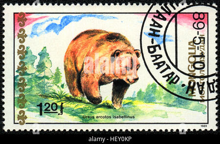 A postage stamp printed in Mongolia shows Himalayan Brown Bear,  'Bears' series, 1989 - Stock Photo