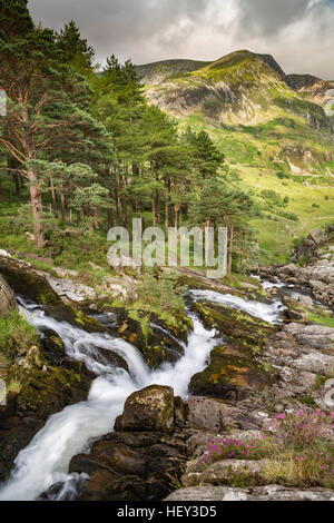 A waterfall along Nant Ogwen at pont pen-y-benglog flows into the Ogwen Valley, Snowdonia. - Stock Photo