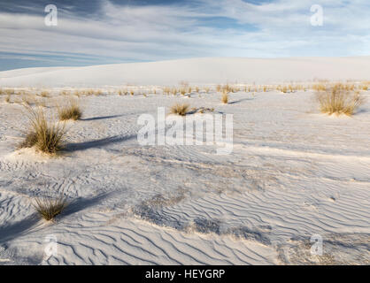 White gypsum sand dunes at White Sands National Monument near Alamogordo, New Mexico, USA - Stock Photo