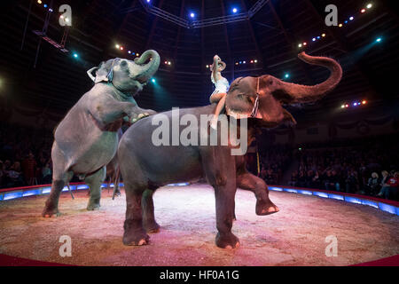 Artists sit on an elephant during the premiere of the Circus Krone winter program in Munich, Germany, 25 December - Stock Photo