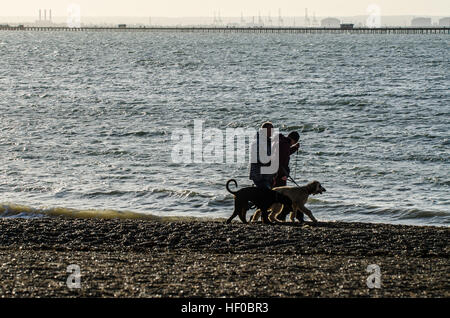 Boxing Day. People took the chance to enjoy Southend's beaches and pier during the bright but cold weather. Some - Stock Photo