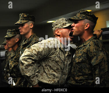 United States Marine Corps Officer in Service B ( Bravos ) Uniform ...