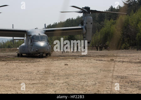 Republic of Korea Marines intergraded with U.S. Marines with Fox Company, Battalion Landing Team 2nd Marines, 3rd - Stock Photo
