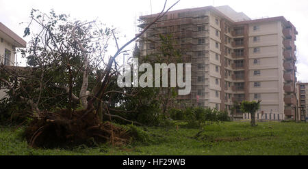 Typhoon Neoguri's winds knocked down trees July 8-9 at Camp Foster, and caused minor damage across U.S. military - Stock Photo