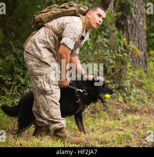 Lance Cpl. Jacob Varela, a combat tracker with Military Working Dog Platoon, 2nd Law Enforcement Battalion, II Marine - Stock Photo