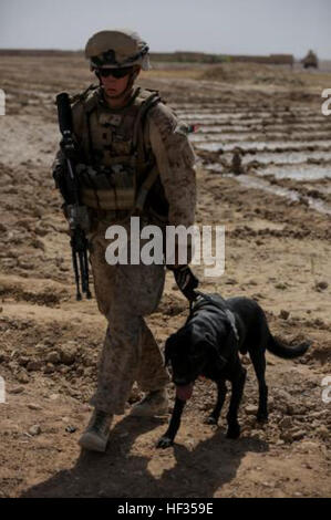 U.S. Marine Lance Cpl. Daniel Johnson, a military working dog handler and his military working dog Cpl. Gauge assigned - Stock Photo