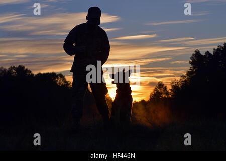 Military Working Dog, U.S. Army Sergeant Astor P720, assigned to 92nd Military Police Company, obediently sits and - Stock Photo