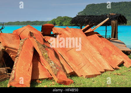 Heap of reddish wood battens piled together beside a thatch roofed shed for the visitors on the southernmost part - Stock Photo