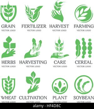 Isolated abstract green color wheat ear logo collection. Nature element logotype set. Leaf in human hand icon. Agricultural - Stock Photo