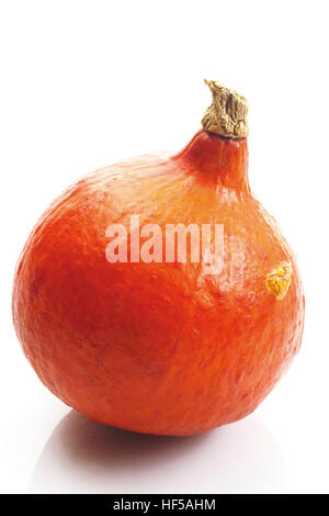 hokkaido pumpkin cucurbita stock photo royalty free image 79527418 alamy. Black Bedroom Furniture Sets. Home Design Ideas