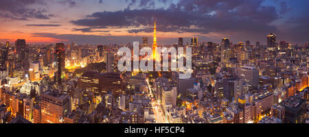 Panorama of the skyline of Tokyo, Japan with the Tokyo Tower photographed at dusk. - Stock Photo