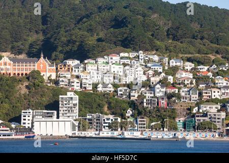 Wellington New Zealand waterfront Clyde Quay Marina, Mount Victoria, Wellington, North Island, New Zealand - Stock Photo
