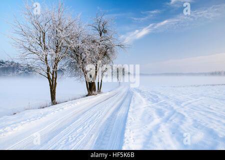 Masuria road in snowy winter, Poland, Europe. - Stock Photo