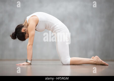 Beautiful Yoga: Cat, Marjaryasana pose - Stock Photo