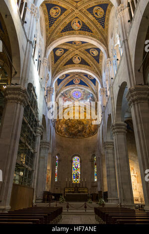 Nave of the Duomo di San Martino, the roman catholic cathedral of Lucca, Tuscany, Italy. - Stock Photo