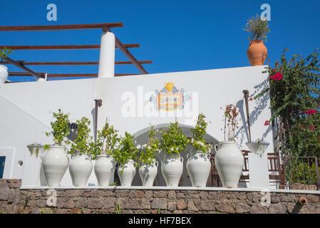 Flowers pots, Panarea, Aeolian Islands, Sicily, Italy, Europe, - Stock Photo
