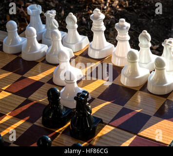 Chess set showing white and black chess pieces on a chess board - Stock Photo