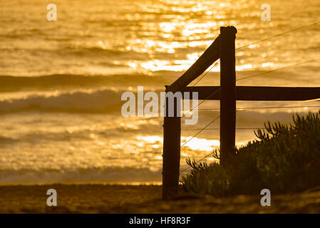 A path leading to a beach in Sydney at the sun rises over the water - Stock Photo